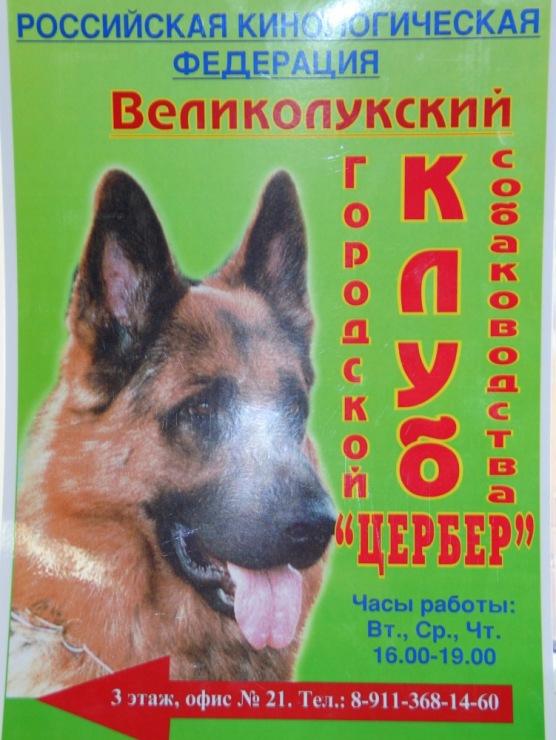 http://data19.gallery.ru/albums/gallery/189078-3568e-54562490-m750x740-uf8346.jpg