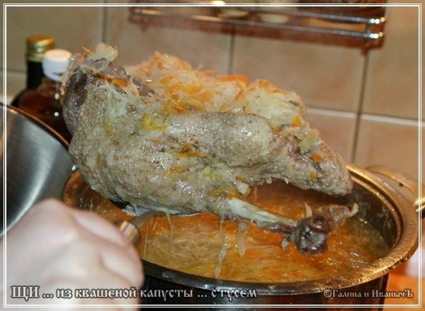 Щи кислые из квашеной капусты с гусем