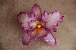 Орхидеи       - Страница 3 301078-272e2-54948771-h200-ubda12