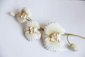 Орхидеи       - Страница 3 301078-93a99-55683521-h200-u2edca