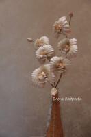 Орхидеи       - Страница 3 301078-c4aa9-55684373-h200-u02c97