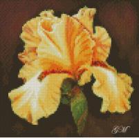 http://data19.gallery.ru/albums/gallery/345651-9e995-62789108-h200-u74a35.jpg