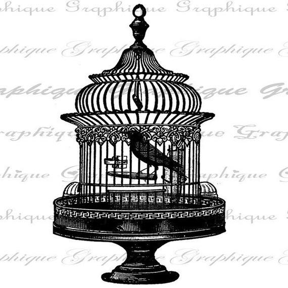 Рубрики картинки для декупажа птицы
